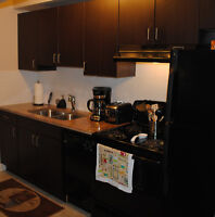 Fully Funished and Equipped One Bedroom Condo