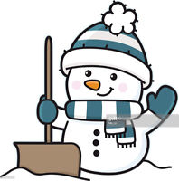 Teenager willing to Shovel Snow this Winter for a small price!