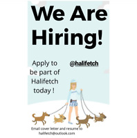 Join the Halifetch Team!