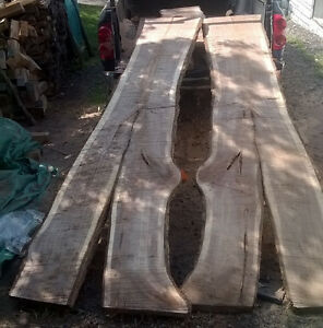 "huge live edge walnut slabs up to 40"" wide London Ontario image 1"