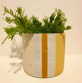 Concrete Cement Plant Pot, Planter. Stripe + Block Colour. 14cm