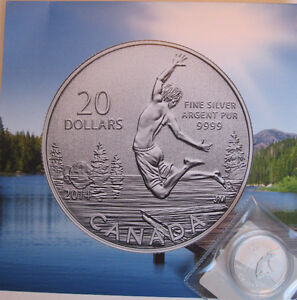 2014 20$ 99.99% fine silver Summertime coin with COA