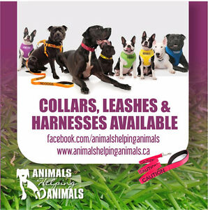 Animals Helping Animals Awareness Products