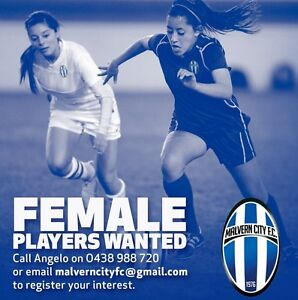 Malvern City FC - Female Soccer Players Wanted Kooyong Stonnington Area Preview
