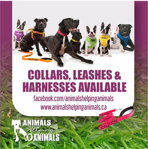 Animals Helping Animals Pet Services and Awareness Products