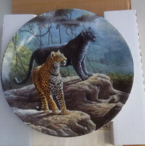 Great Cats of the Americas -The Jaguar Plate 1 Kitchener / Waterloo Kitchener Area image 1