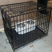 Dog Cage and food/water bowls