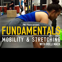 Joint Health & Mobility Fundamentals & Stretching Workshop