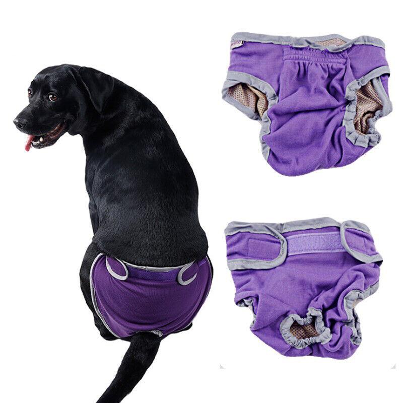 Dog Diaper Washable Comfort Pet Training Short Pants Reusabl