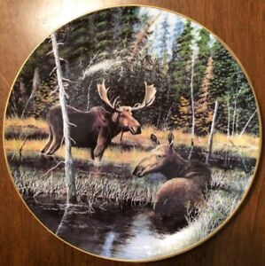 """The Moose"" - Wild and Free Collection - by Fred Neubacher"