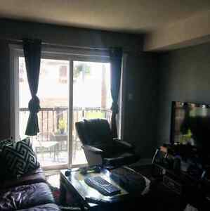 Adorable 1bd apartment in amazing location! Kitchener / Waterloo Kitchener Area image 2