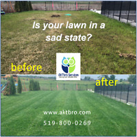 Lawn Mowing, Edging,Yard Cleanup, Trimming , Garden Maintenance