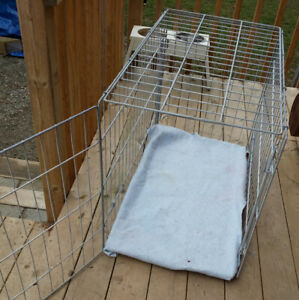 Dog  crate/large wire collapsible