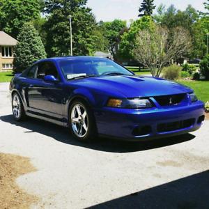 2003 Mustang Cobra Oem K - Member