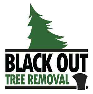 Black Out Tree Removal Edmonton Edmonton Area image 1