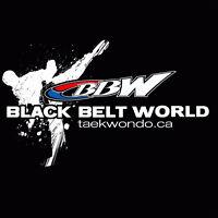 Ultimate Summer Camp at Black Belt World!
