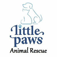 Volunteers needed to help with rescue