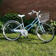 Pendleton Littleton bike