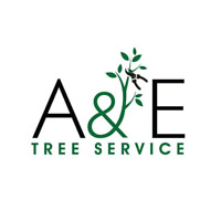 Tree Removal/Pruning and Stump Grinding