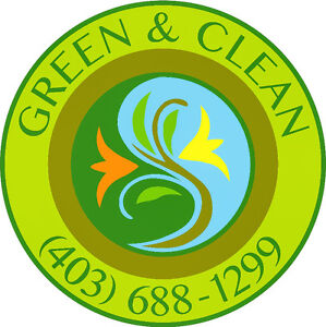 Landscaping , yard clean up , snow removal