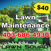 15% Off Lawn Maintenance Package!