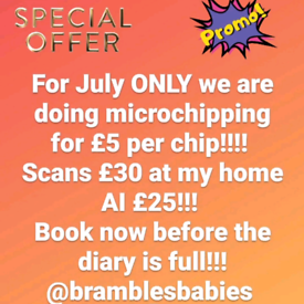 Microchipping and ultrasound scans