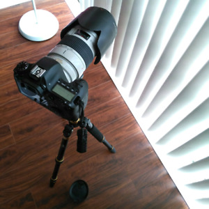 Canon 6D and Canon 70-200mm f2.8 IS L USM