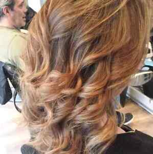 Freedom in your own business as a hairstylist Cambridge Kitchener Area image 4