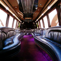 20 passenger party bus services