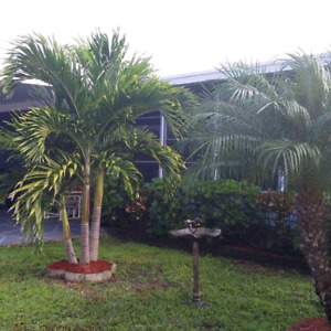 HOME FOR RENT IN BRADENTON FL. IN 55 PLUS GATED COMMUNITY