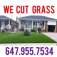 We will do the work-windows, eaves cleaning and cutting grass!