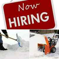 LOOKING FOR A WINTER JOB?