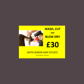 OFFER- Wash, Cut and Blow Dry in Richmond upon Thames