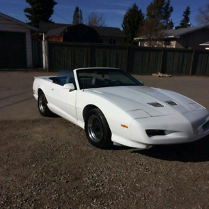 1991 Trans Am convertible very rear price reduced