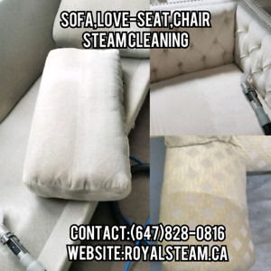 Sofa Steam Cleaning,Chair,Loveseat,Mattress Stain&Odor Removal