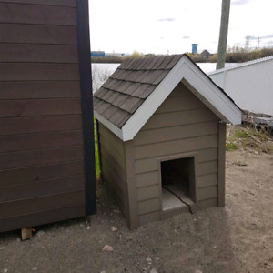 Niche à chien isolée (cabane)