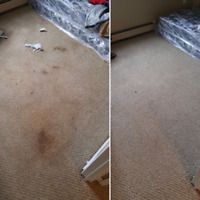 Calgary Residential and Commercial Carpet Cleaning!