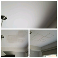 Drywall / Paint / Patch / Handyman / Contractor