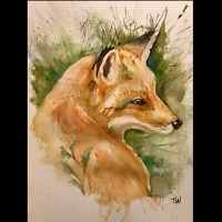 Freelance artist available for Drawings & Paintings