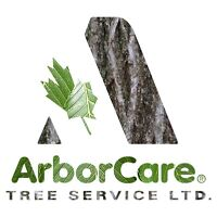 Tree Climbers and Arborists