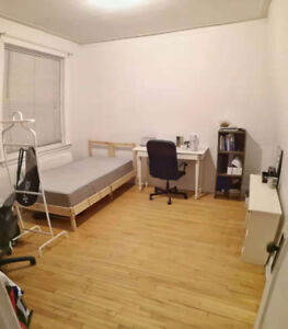 one spacious room in a 1/2 4 in the McGill Ghetto