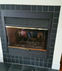 Fireplace Unit Kawartha Lakes Peterborough Area image 1