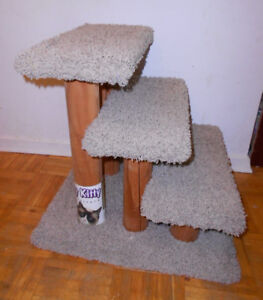 Carpeted cat steps