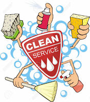 Independent cleaner seeking assistance