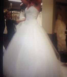 Wedding Ball Gown size 8, and Veil