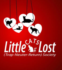 Little Cats Lost (Trap-Neuter-Return) Society Adoption event