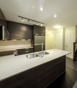 3+1BR 3WR LUXURY TOWNHOUSE CONDO 5033 FOUR SPRINGS AVE BRAND NEW