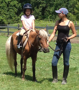 Pony Rides/Petting Zoo Available For Parties And Events