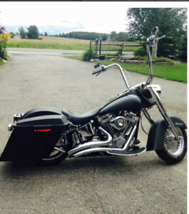 Custom softail fun to ride