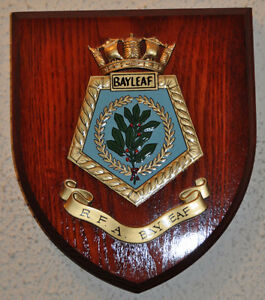 Wooden Crest/Shield Wall Plaques Kingston Kingston Area image 3